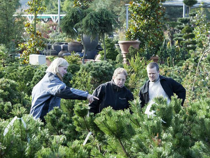 BdB fordert Länder auf, dem Beispiel Niedersachsens und Schleswig-Holstein zu folgen
