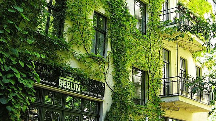 Grün zur Energieeinsparung