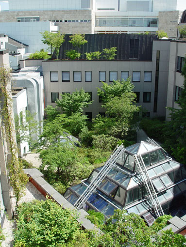 BGL-Dachbegrünung