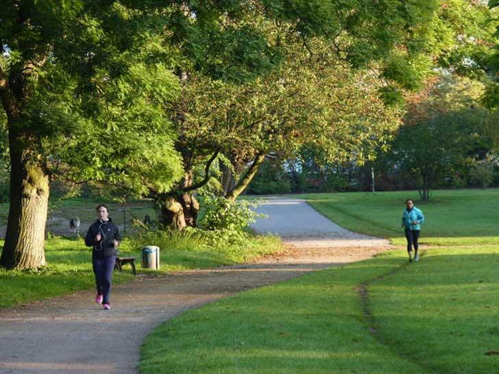 öffentliche Grünflächen