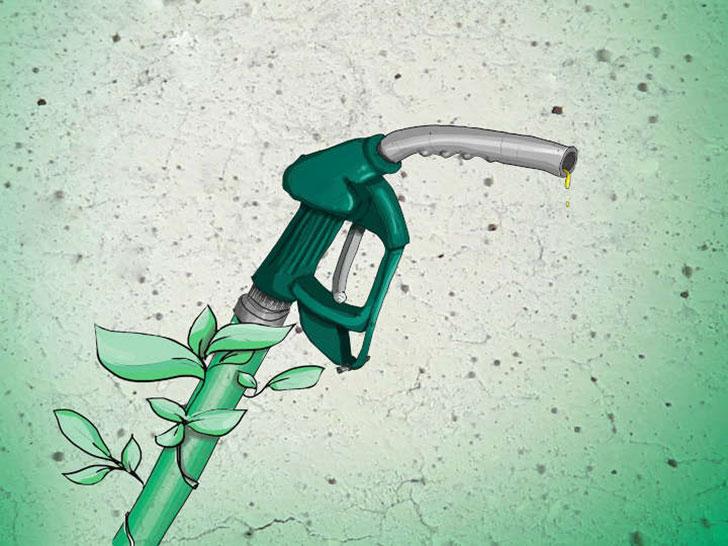 regenerative Alternativen