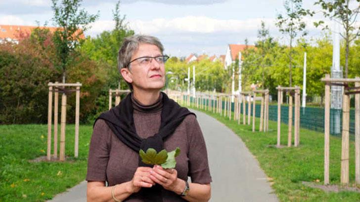 Susanne Böll