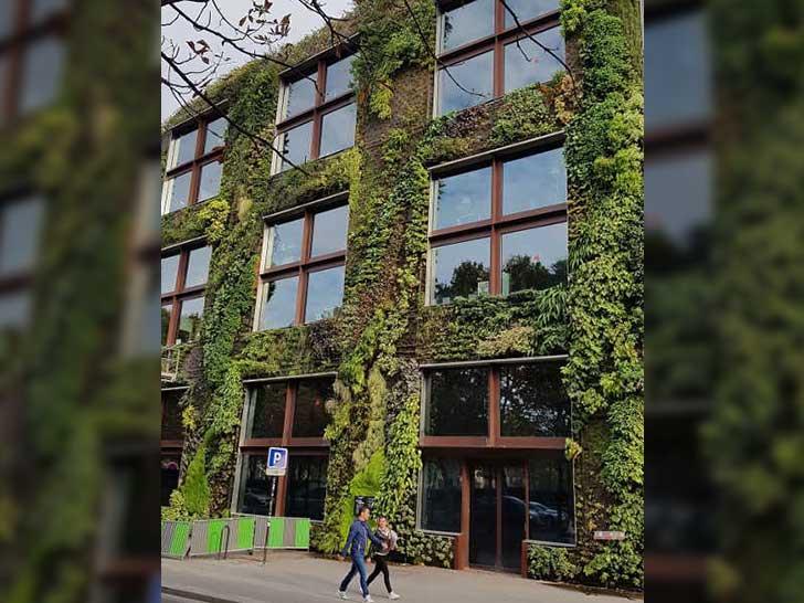 Grün in der Stadt
