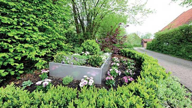 Hochbeete Setzen Pflanzen In Szene