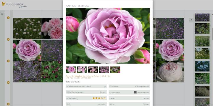 Pflanzenreich – die App für eine professionelle Pflanzplanung