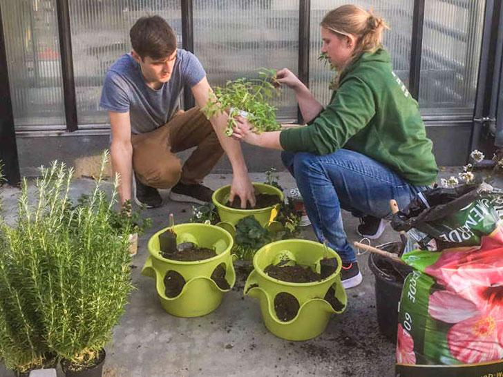 Techniker für Gartenbau