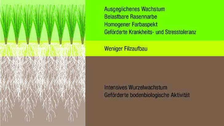 Granalie von Floranid