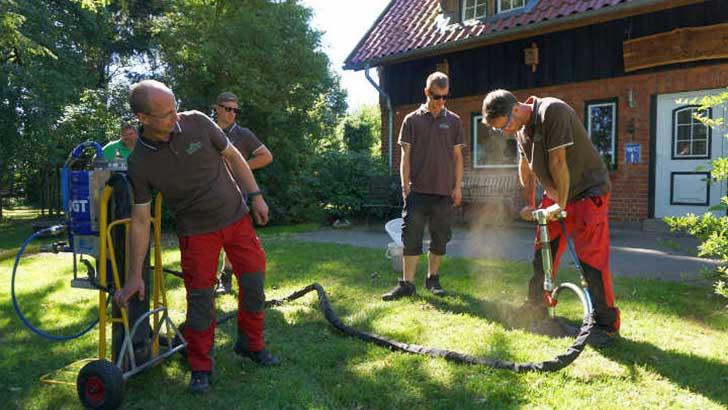 Baumpfleger