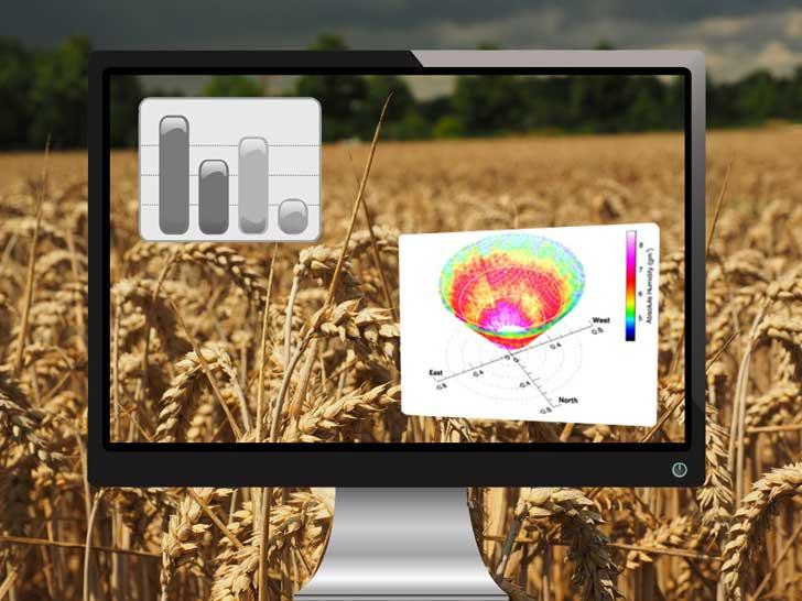 Für Klimaforschung: Forscher lassen virtuelles Getreide im Computer wachsen