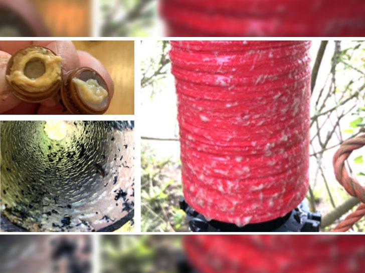 Saubere Bewässerung für 100 Hektar Beerenobst