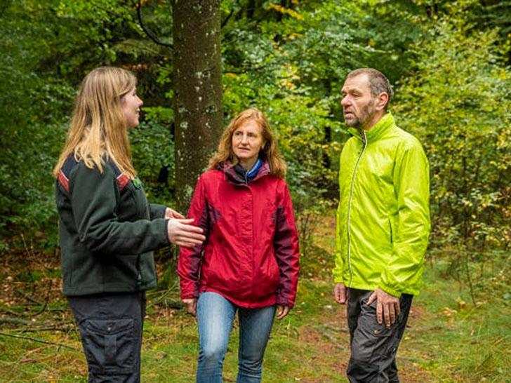 Neu im Netz: Förderoptionen für Privatwaldbesitzer