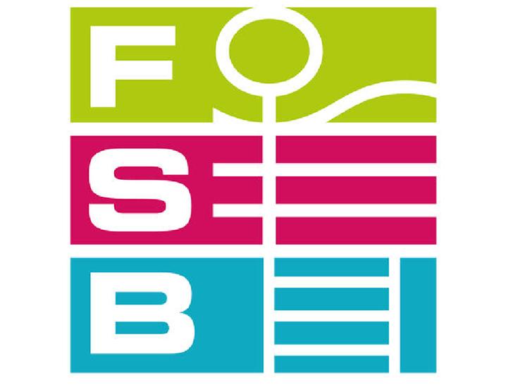 FSB 2019