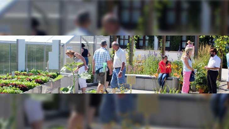 Beet-und Balkonpflanzentag