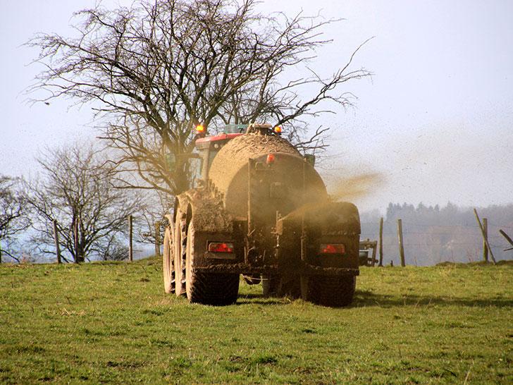 Traktor düngt Feld