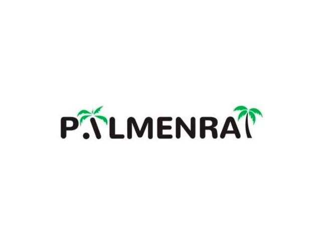 Palmenerde