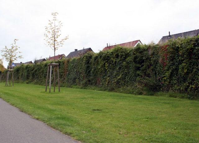 ökologische Lärmschutzwand