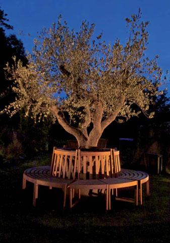 Re-natur Baum