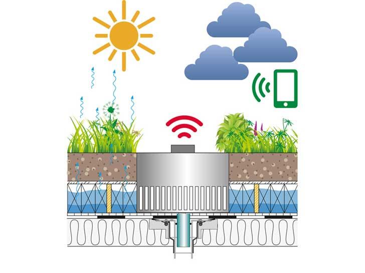 Optigrün-Regenwassermanagement