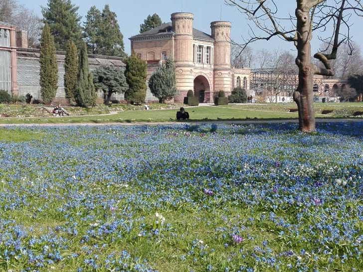 Botanischen Garten in Karlsruhe
