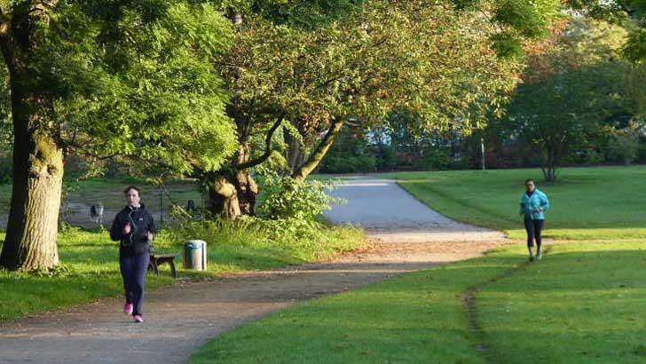 öffentlichen Grünflächen