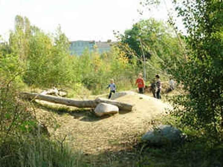 Natur in der Stadt hautnah erleben: Modellprojekt erprobt die Praxis