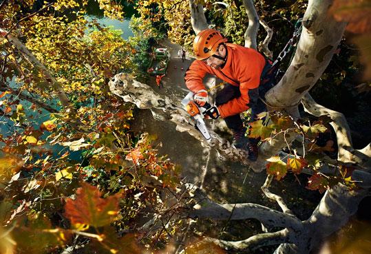 STIHL-Akku-Baumpflegesäge