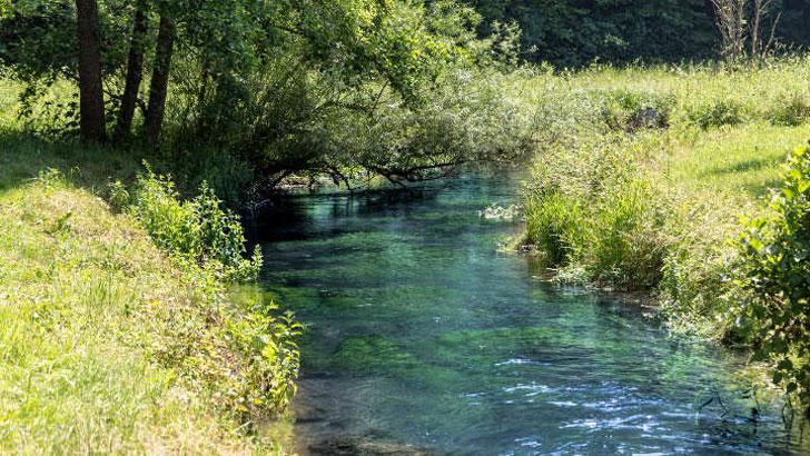 Gewässerqualität