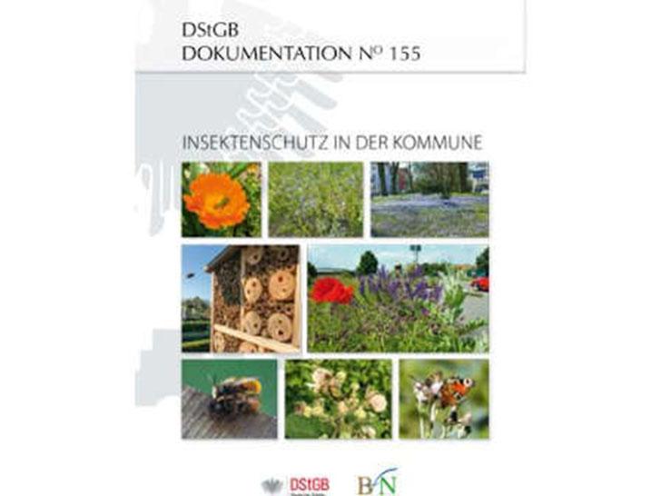 Insektenschutz in Städten