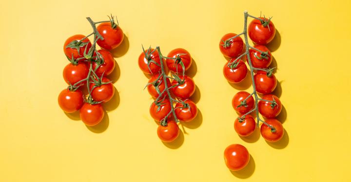 Urlaub für die Geschmacksnerven: Tomaten sorgen für Frühlingsgefühle auf dem Teller
