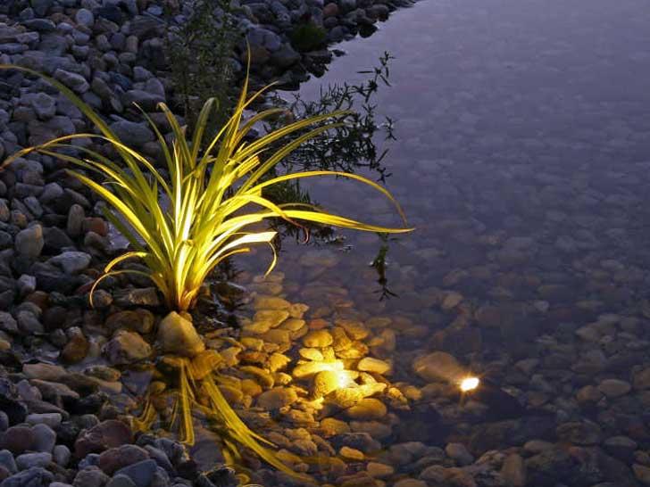 Lichtakzente am Gartenteich