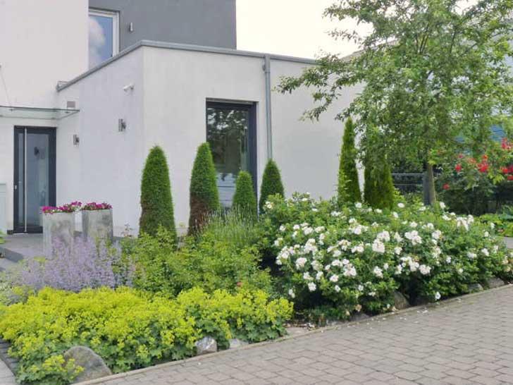kein tropfen auf dem hei en stein bepflanzte vorg rten sind gut f rs stadtklima. Black Bedroom Furniture Sets. Home Design Ideas