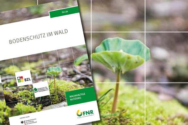 FNR veröffentlicht neue Broschüre zum Bodenschutz im Wald