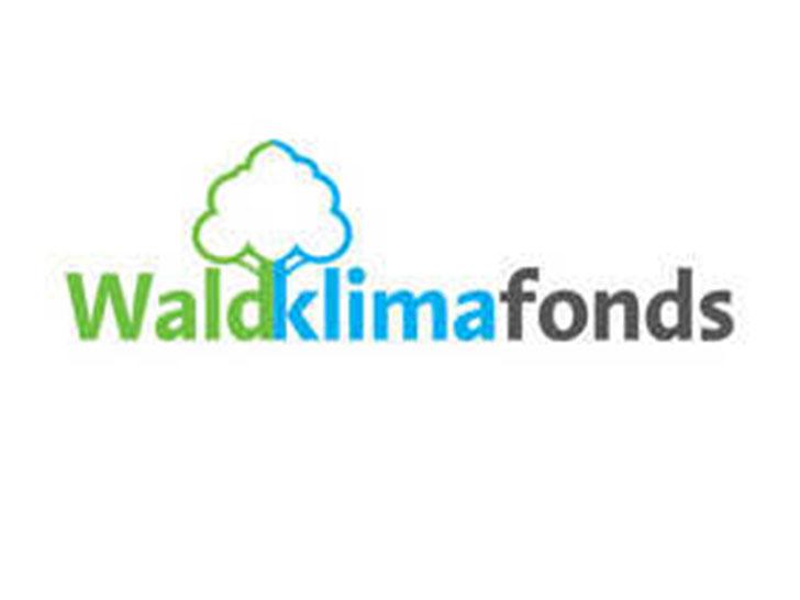 FNR übernimmt die Projektträgerschaft für den Waldklimafonds