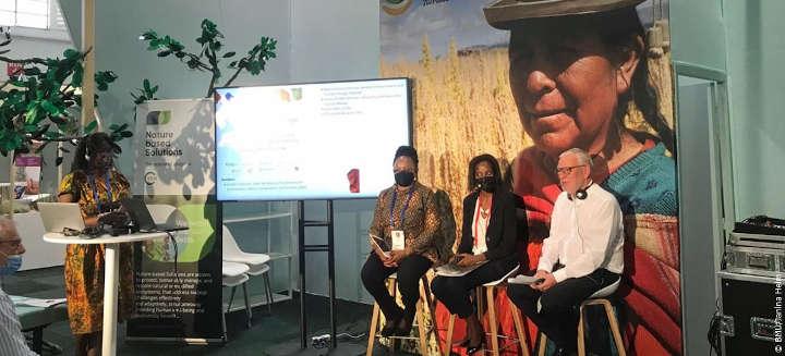 Biodiversitätsverlust und Klimawandel: Weltschutzunion fordert enschlossenes Vorgehen