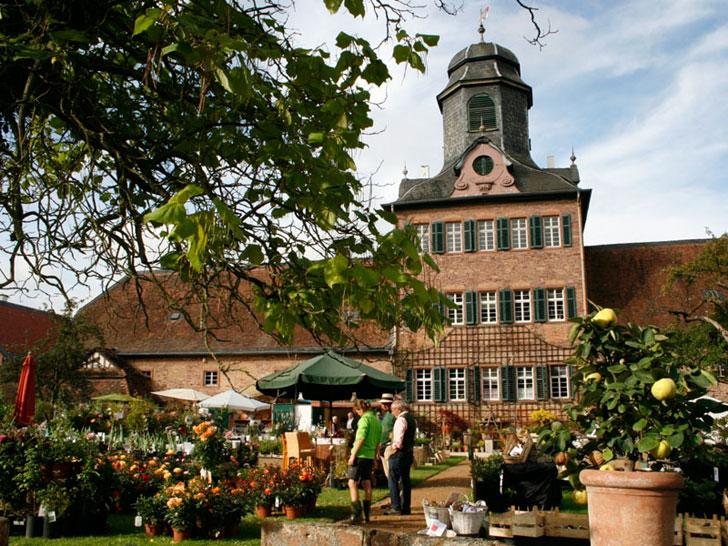 Gartenfest Schloss Wolfsgarten